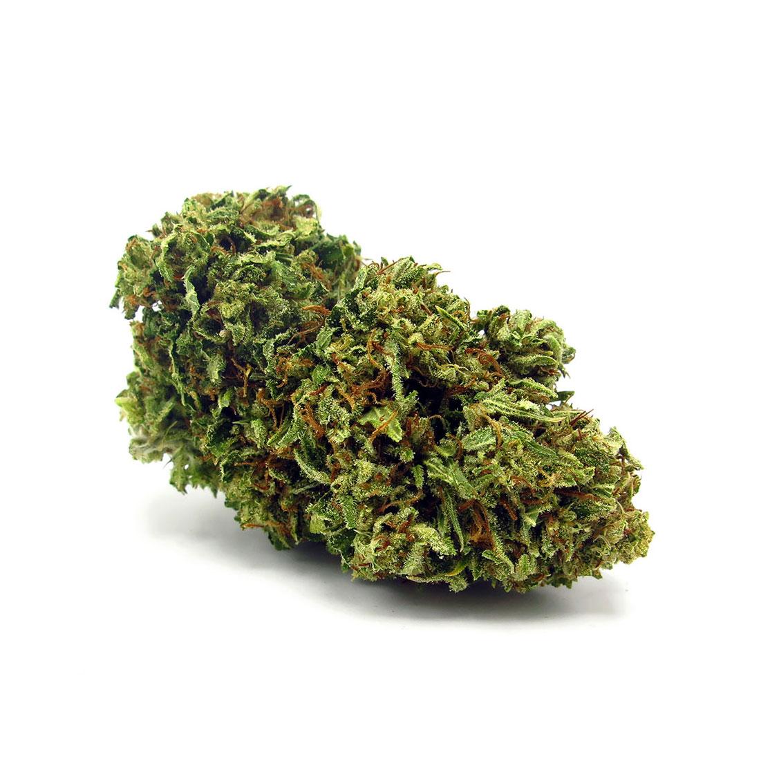 Marijuana oil cbd bottle